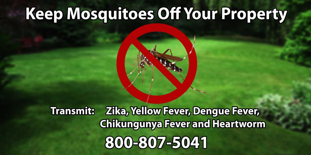 zika, zika virus, zika nj, zika virus nj, zika vaccination, zika prevention, repel mosquitoes, repel mosquitoes nj, repel mosquitoes monmouth county, repel mosquitoes middlesex county, repel mosquitoes ocean county