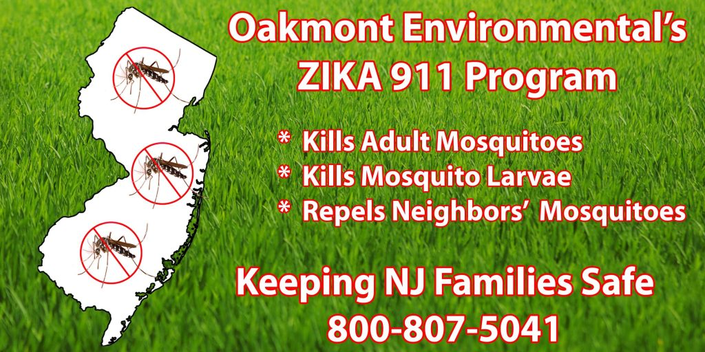 mosquito bites ocean county, mosquito bites monmouth county, mosquito bites middlesex county, mosquito bites, mosquito bites nj, how to get rid of mosquitoes, how to get rid of mosquitoes nj, how to get rid of mosquitoes monmouth county, how to get rid of mosquitoes middlesex county, how to get rid of mosquitoes ocean county, get rid of mosquitoes, get rid of mosquitoes nj, get rid of mosquitoes monmouth county, get rid of mosquitoes middlesex county, get rid of mosquitoes ocean county, how to keep mosquitoes away, how to keep mosquitoes away nj, how to keep mosquitoes away monmouth county, how to keep mosquitoes away middlesex county, how to keep mosquitoes away ocean county