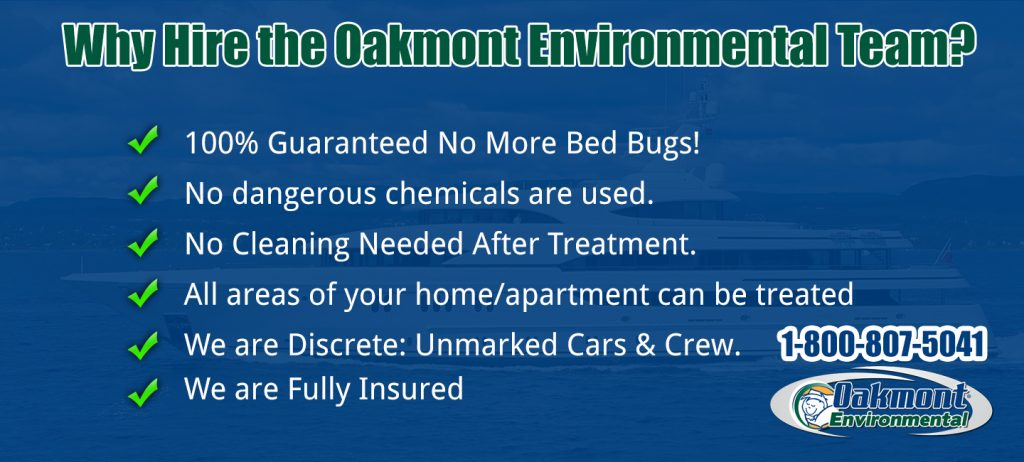 bedbugs, bedbugs nj, bedbugs monmouth county, bedbugs ocean county, bedbugs middlesex county, pictures of bed bugs, bed bugs treatment, bed bug treatment, bed bug treatment nj, bed bug treatment monmouth county, bed bug treatment middlesex county, bed bug treatment ocean county